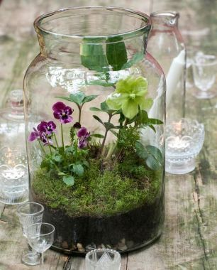 80 Awesome Bonsai Terrarium in the Jars Ideas | Easter | Pinterest
