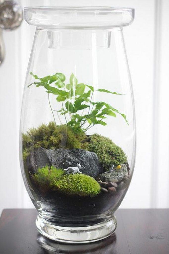 Bonsai Terrarium Miniature Landscaping Jars 10