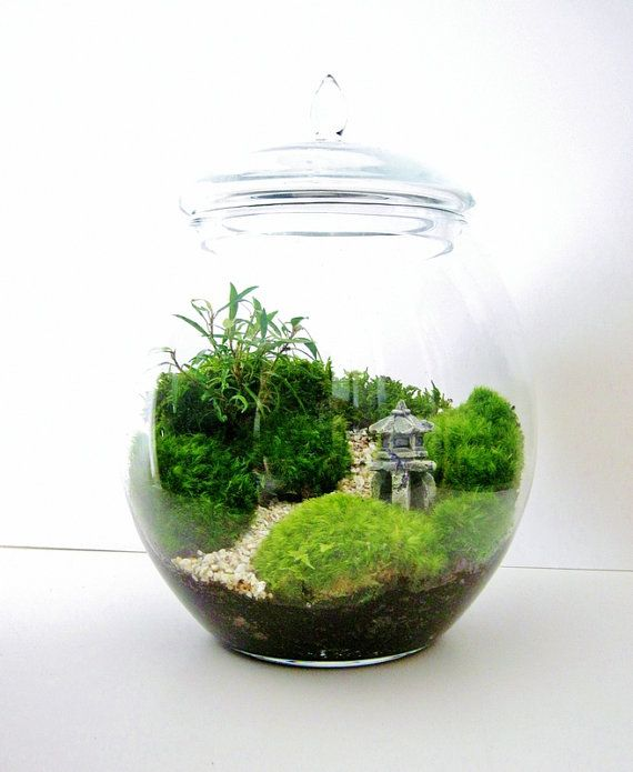 Asian Landscape Garden Terrarium with Miniature Path, Pagoda & Tree