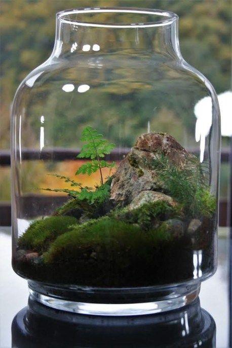 Stunning Bonsai Terrarium Miniature Landscaping Jars 22 | Bonsai