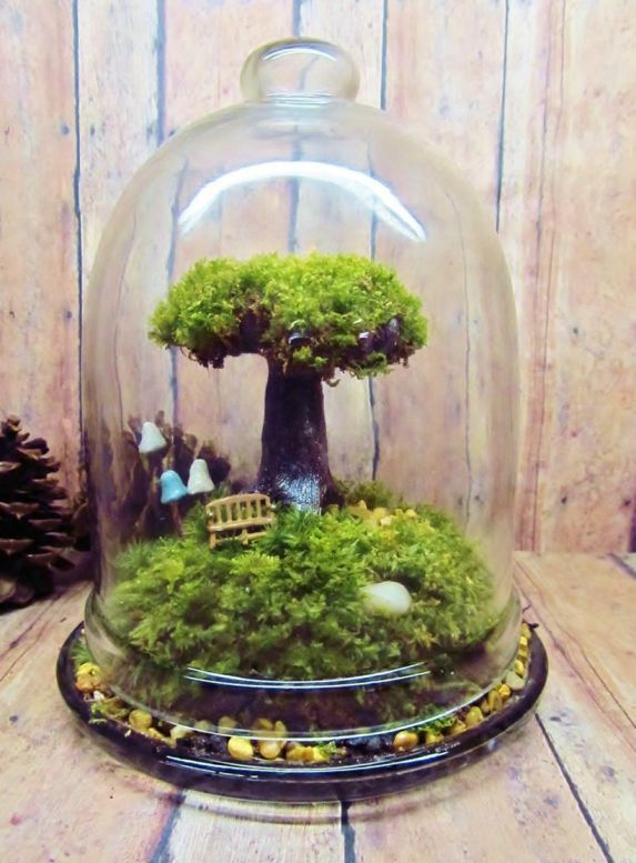 Bonsai Terrarium Miniature Landscaping Jars