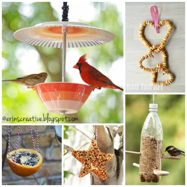 15 Bird Feeder Crafts - Red Ted Art