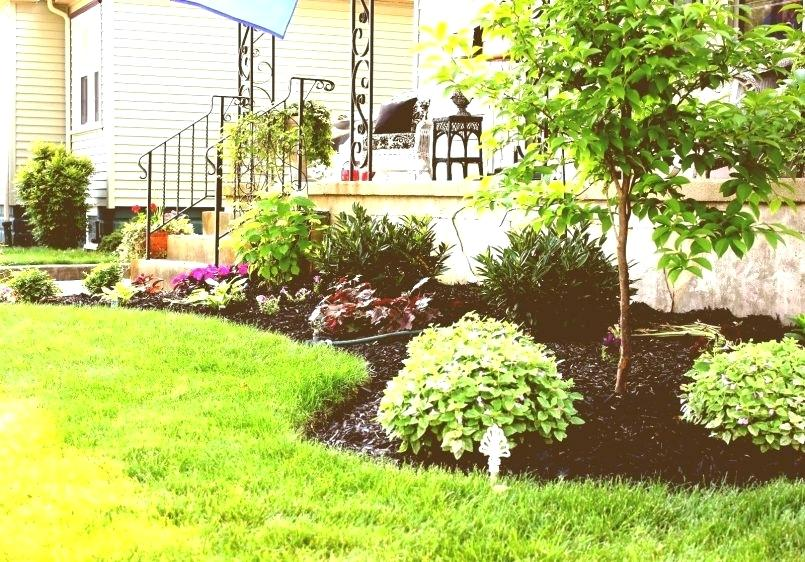 Landscaping Flower Beds Winter Color And Flowers Landscaping Ideas