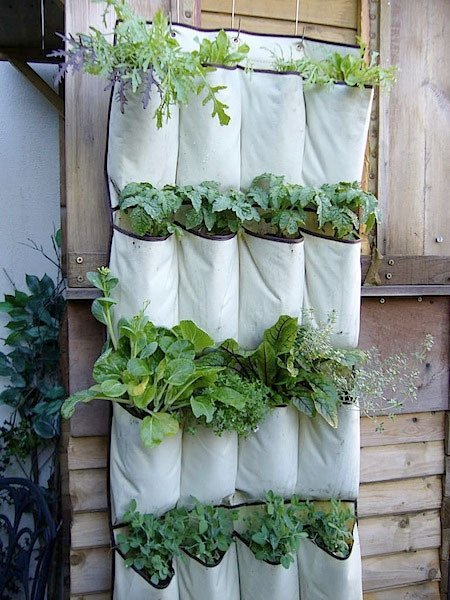25 Indoor Garden Ideas - Your No.1 source of Architecture and