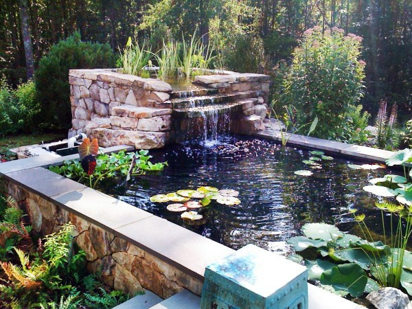Modern Backyard Fish Pond Garden Landscaping Ideas 6