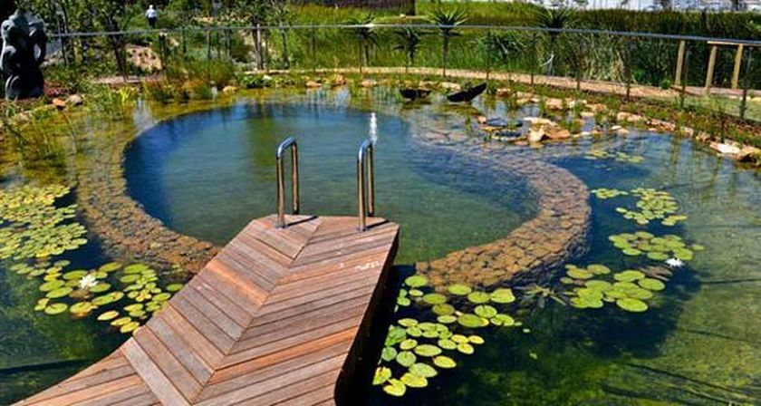 Pin by AndrewJames on outdoor living & design | Swimming pool pond