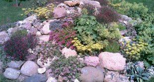 Rock Garden Design Tips, 15 Rocks Garden Landscape Ideas   Rock