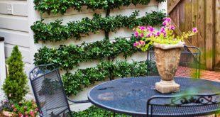 Cheap Backyard Ideas   Better Homes & Gardens