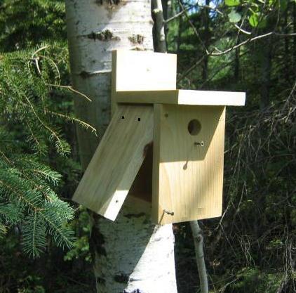 Stand Bird House Ideas Garden Ideas 6