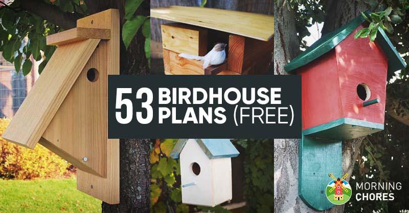 Stand Bird House Ideas Garden Ideas 9